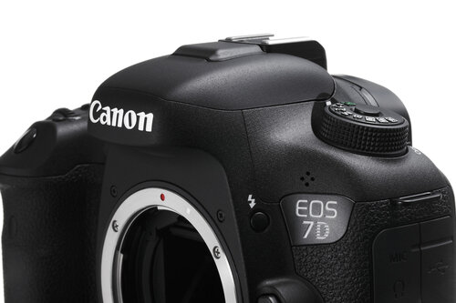 Canon EOS 7D Mark II #4