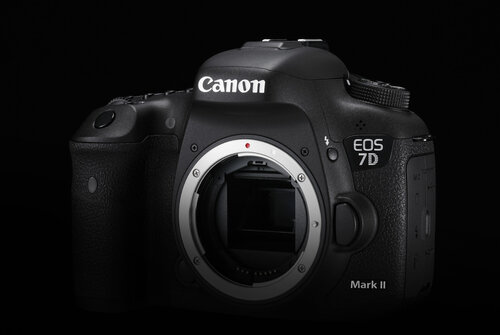 Canon EOS 7D Mark II #6