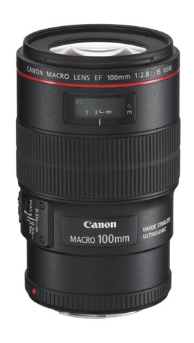 Canon EF 100mm f/2.8L Macro IS USM #3